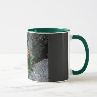 Versteckendes Frosch COLUMBIUM Tasse