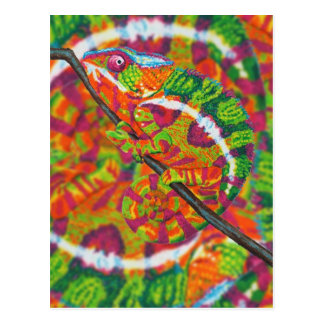 Verstecktes Chamäleon Postkarte