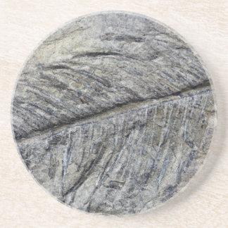 Versteinerte Pflanze Sandstein Untersetzer