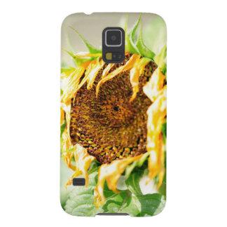 Verwelkende Sonnenblume Samsung S5 Cover