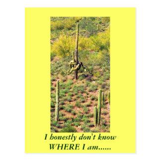 Verwirrter Saguaro-Kaktus Postkarte