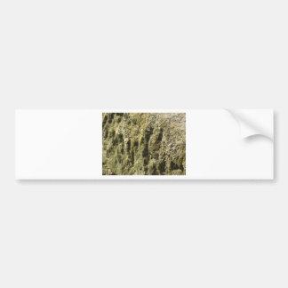 Verwitterter Stein mit Flechten- und Autoaufkleber