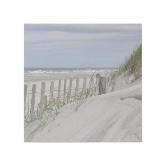 Verwitterter Zaun und Sanddünen am Strand Galerieleinwand