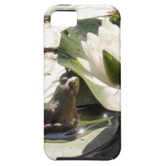 Verzauberter Frosch iPhone 5 Schutzhülle