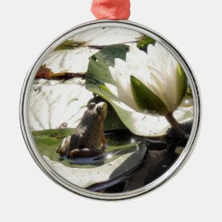 Verzauberter Frosch Silbernes Ornament