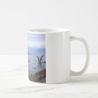 Vevey Paddelboot, Genfersee 97 Kaffeetasse