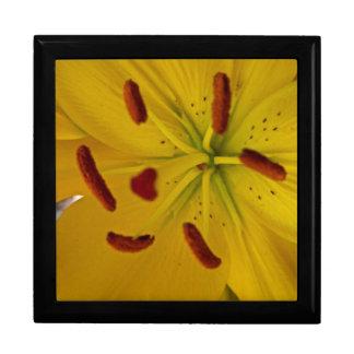 Vibrierende gelbe Lilie Große Quadratische Schatulle