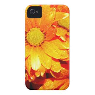 Vibrierender orange Fiore iPhone 4 Hüllen