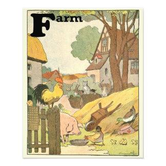 Vieh-illustriertes Alphabet Fotodruck
