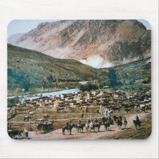 Vieh-Ranch, Colorado, 1899 (Foto) Mousepad