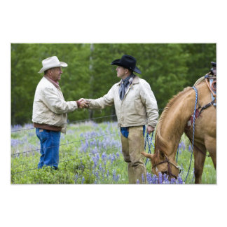 Viehzüchter, die Hände über herein fechten rütteln Foto Drucke