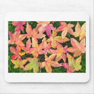 Viel buntes Herbstahorn-Blätter auf grünem Gras Mousepad