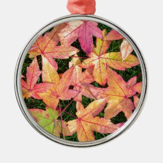 Viel buntes Herbstahorn-Blätter auf grünem Gras Rundes Silberfarbenes Ornament