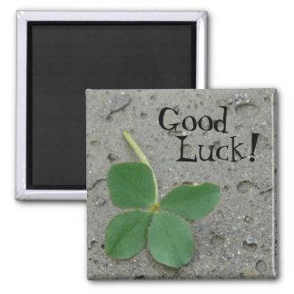 Viel Glück! Vierblättriges Kleeblatt Quadratischer Magnet