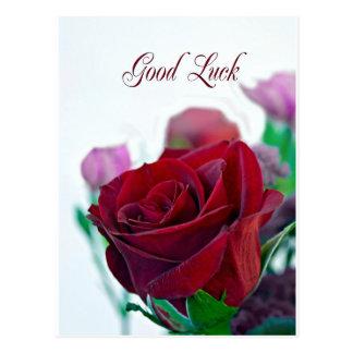 Viel Glückkarte mit einer klassischen Roten Rose Postkarte