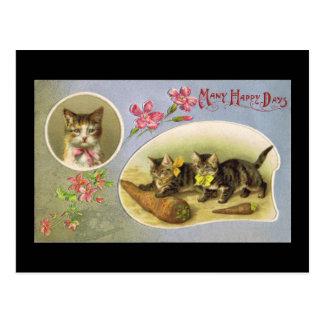 Viele glücklichen Tage Postkarte