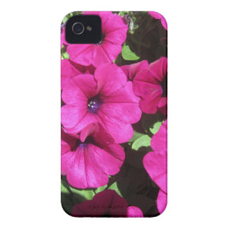 Viele lila Petunien iPhone 4 Cover
