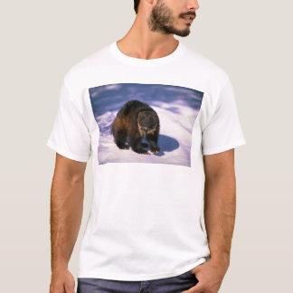Vielfrass auf Schnee T-Shirt