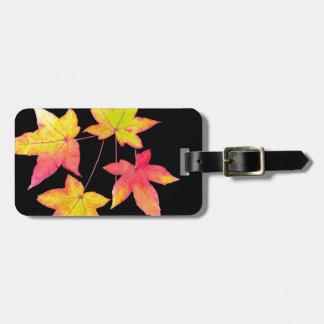 Vier farbiges Herbst-Blätter auf schwarzem Kofferanhänger