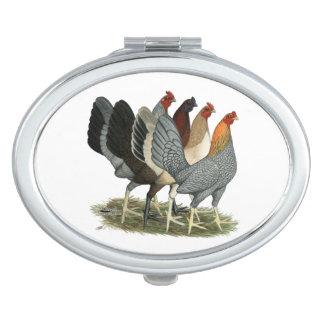 Vier Gamefowl Hennen Taschenspiegel
