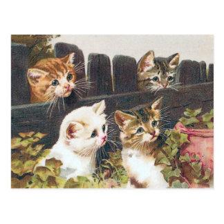 """""""Vier Kätzchen"""" Vintag Postkarte"""