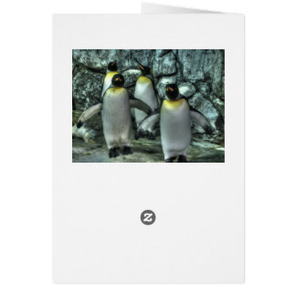 Vier Pinguine Karte