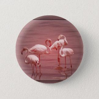 Vier scharende Flamingos Runder Button 5,7 Cm