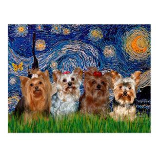 Viererkabel Yorkshires Terrier - sternenklare Postkarte