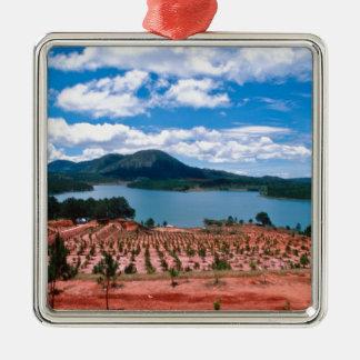 Vietnamese Forest Lake Quadratisches Silberfarbenes Ornament