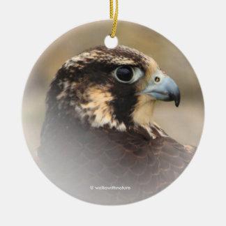 Vignetted Profil eines Wanderfalken Keramik Ornament