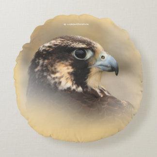 Vignetted Profil eines Wanderfalken
