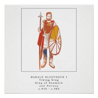 Viking-König Harald Bluetooth Poster