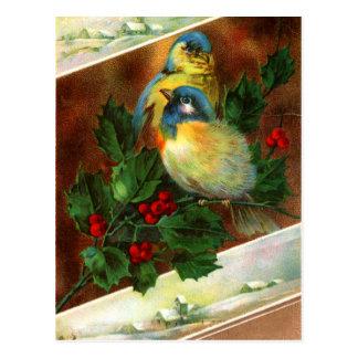 Viktorianische Vogel-Weihnachtspostkarte Postkarte
