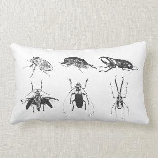Viktorianisches Insekten-Sammlungs-Kissen
