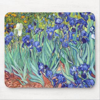 Vincent van Gogh 1889 Iris Mousepad