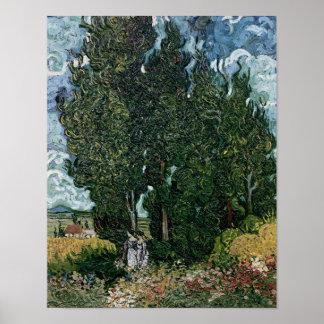 Vincent van Gogh | die Zypressen, c.1889-90 Poster