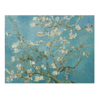 Vincent van Gogh, Mandelblüten Postkarte