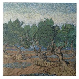 Vincent van Gogh - Olivenhain Keramikfliese