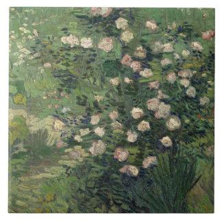 Vincent van Gogh - Rosen Fliese