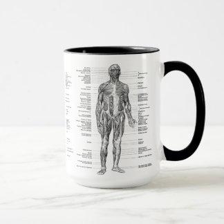 Vintag - beschriftete menschliche Anatomie-Muskeln Tasse