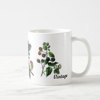Vintag-Früchte mit der NiederlassungTasse Kaffeetasse