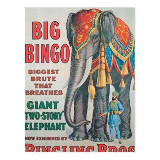 Vintag: Zirkus Barnum u. Bailey - Postkarte