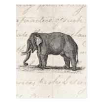 Vintage 1800s Elefant-Illustration - Elefanten Postkarte