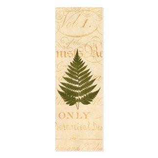Vintage 1800s olivgrünes Grün-Farn-Blatt-Illustrat Visitenkarten