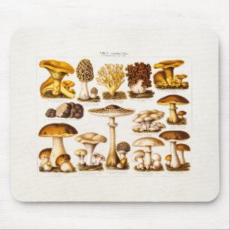 Vintage 1800s Pilz-Vielzahl-Pilz-Schablone Mousepads