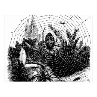Vintage 1800s Spinnen-Netz-Illustration - Spinnen Postkarte