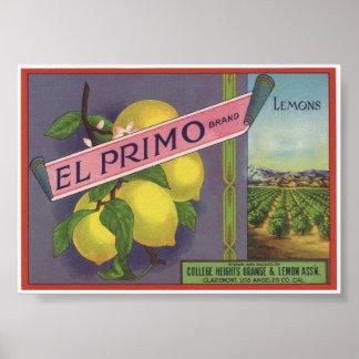 Vintage alte Zitronen-Frucht-Kisten-Aufkleber Plakate