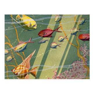 Vintage antike Fisch-Undersea Ozean-Meer bunt Postkarten