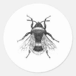 Vintage, antike Hummel-Bienen-Illustration Runder Aufkleber