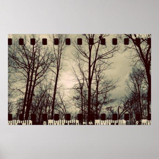 Vintage Bäume - Film-Überlagerung Posterdruck